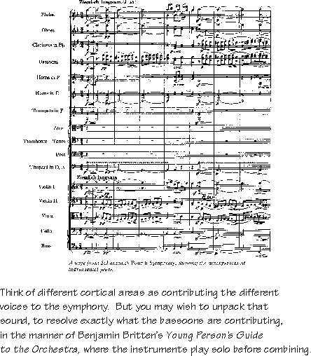 orchestral voices as NP-PP, symphony-as-sentence